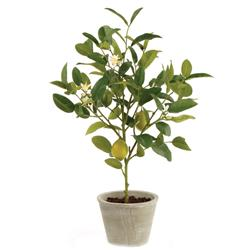 Lemy French Country Beige Ceramic Potted Lemon Tree