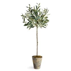 Ryan French Country Beige Ceramic Potted Olive Tree - Small