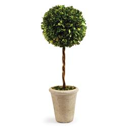 Marin French Country Green Boxwood Single Sphere Topiary