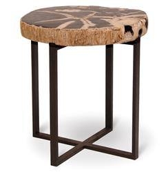 Palecek Black Petrified Wood Industrial Loft Round Side Table - 16 Inch