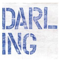 Large Block Darling Blue Wood Wall Art - 12 Inch