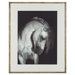 Grey Equestrian Museum Framed Photograph | Kathy Kuo Home