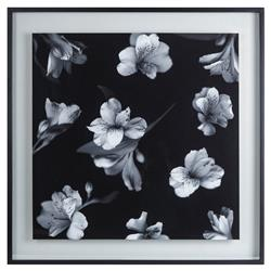 Kelly Hoppen Claudette Modern Classic Black & White Flower Print in Glass | Kathy Kuo Home