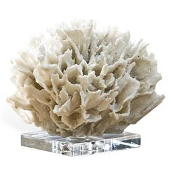 Sandestin Coastal Beach White Ribbon Coral on Crystal Base | Kathy Kuo Home