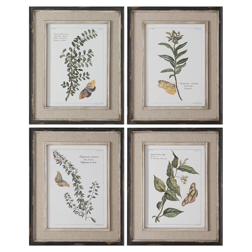 Butterfly French Rustic Linen Botanical Print - Set of 4   Kathy Kuo Home