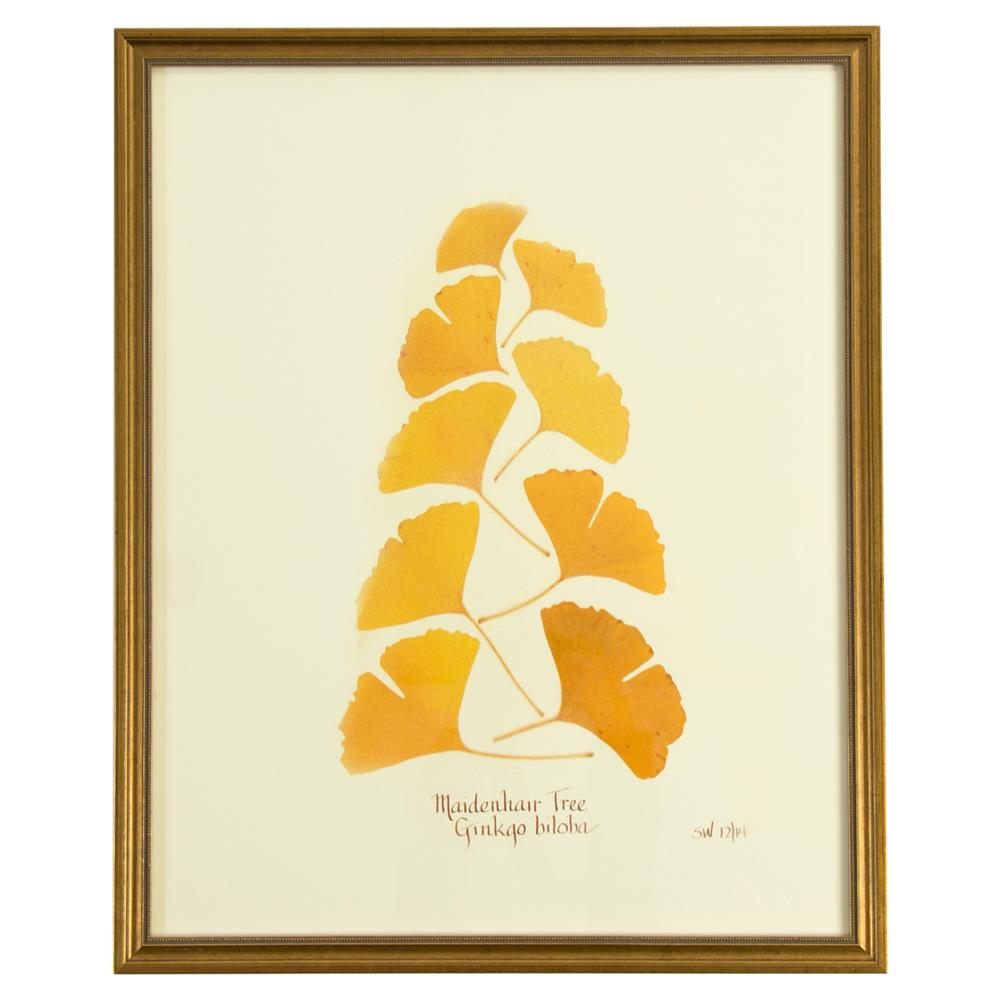 French Ginkgo Biloba Print Botanical Framed Wall Art | Kathy Kuo Home