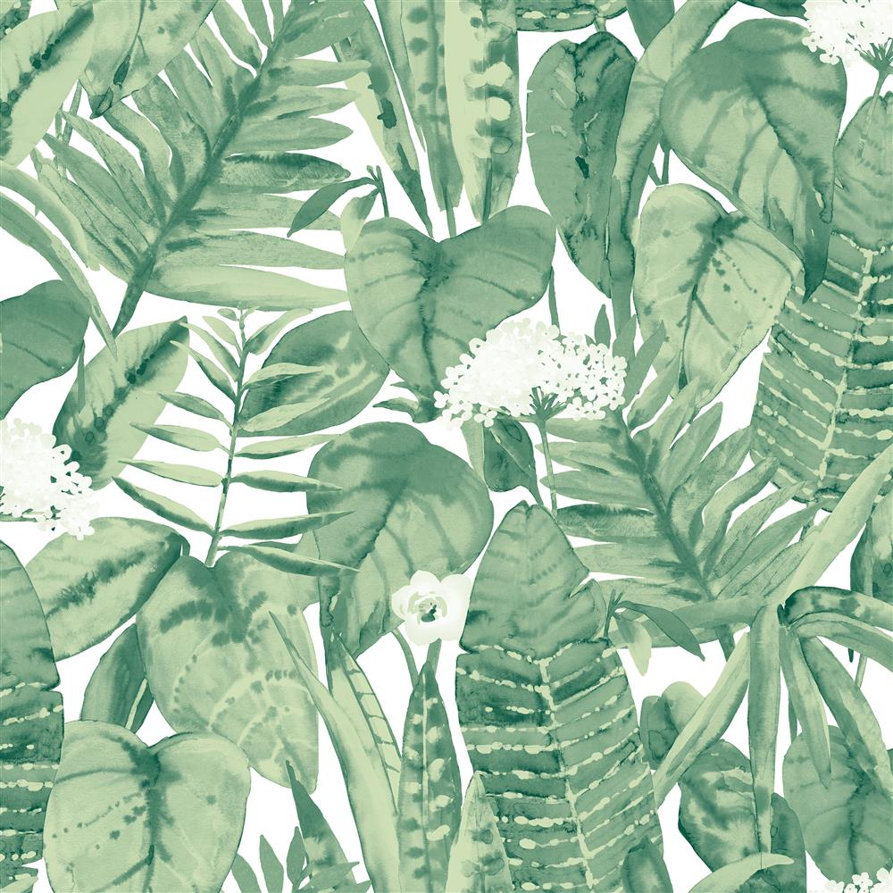 Green Tropical Foliage Removable Wallpaper Kathy Kuo Home