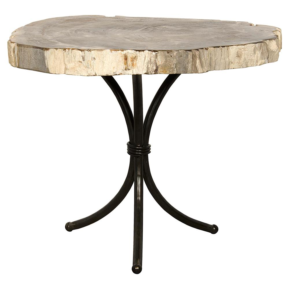 Cooper Industrial Loft Petrified Wood Black Metal Side End Table - Cooper end table