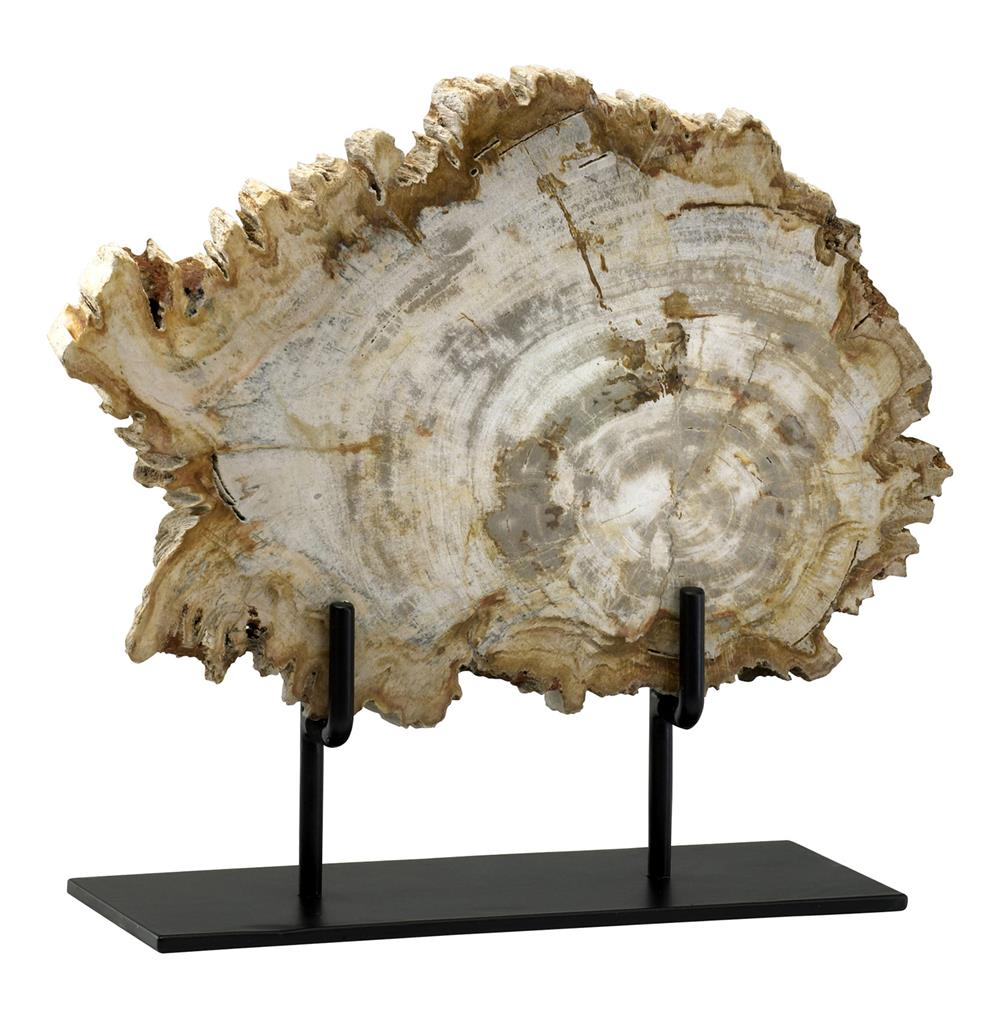Roswell Petrified Wood Fragment Sculpture Kathy Kuo Home