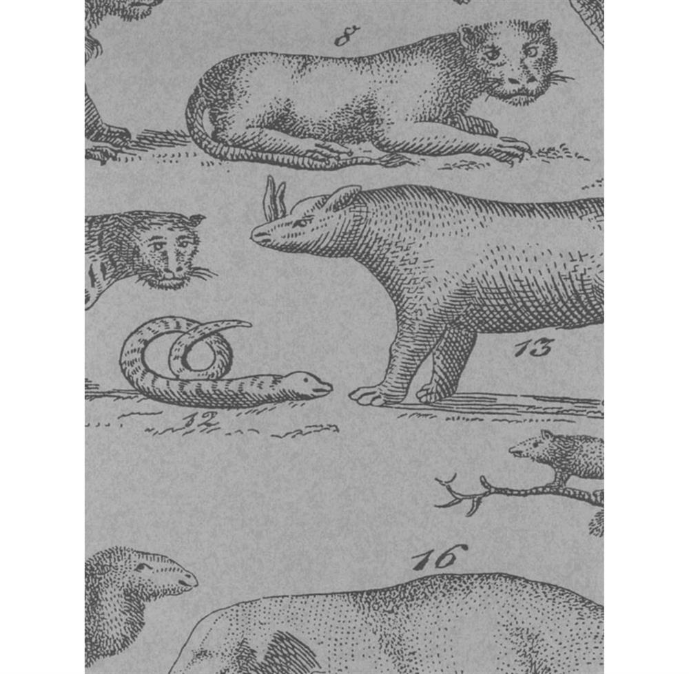 Vintage painted jungle animals wallpaper cloud 2 rolls for Classic jungle house for small animals