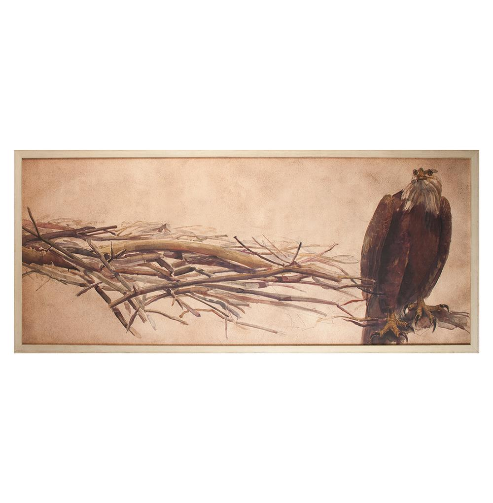 Eagle furniture coastal collection - American Eagle Rustic Lodge Water Color Wall Art Framed