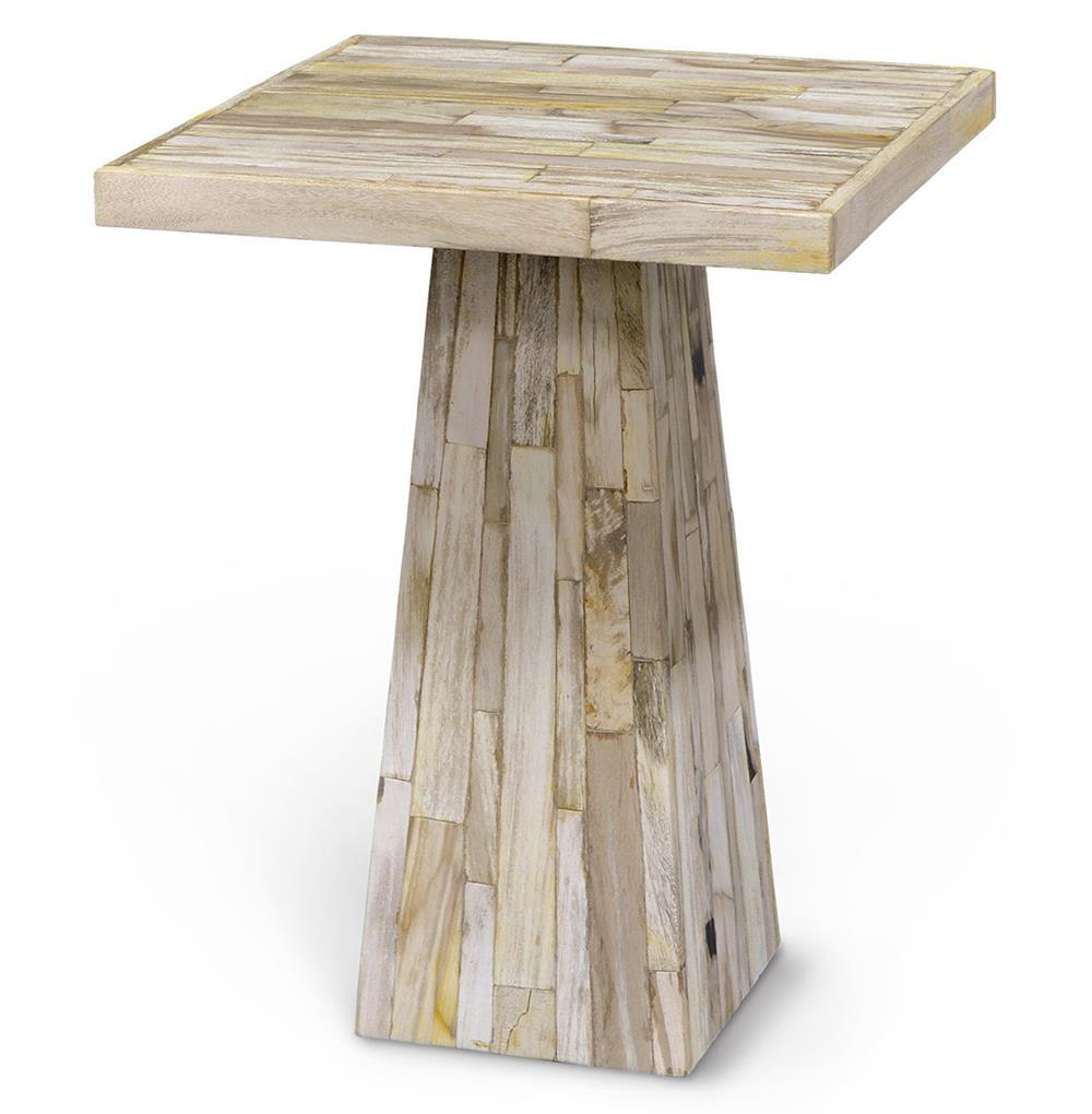 Palecek petrified wood coastal beach petrified wood square for Wood side table