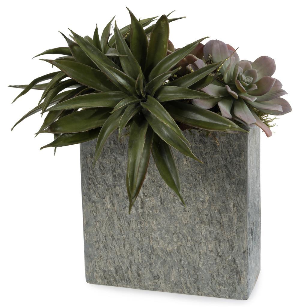 Plant Vase Top View