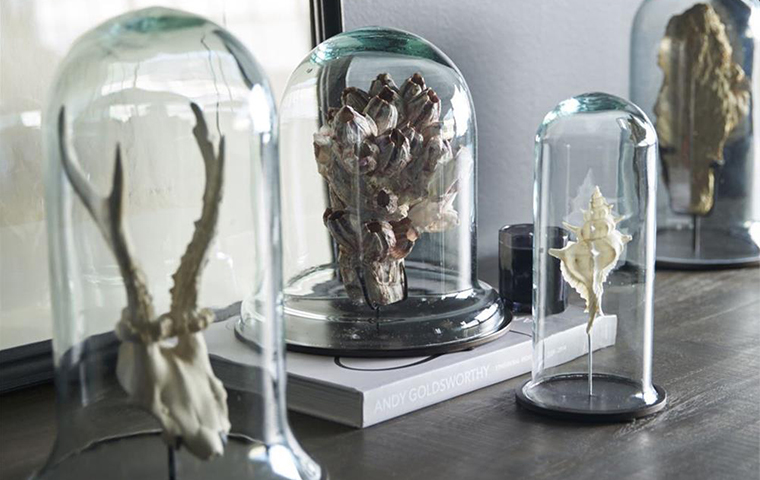 Curiosities | Kathy Kuo Home