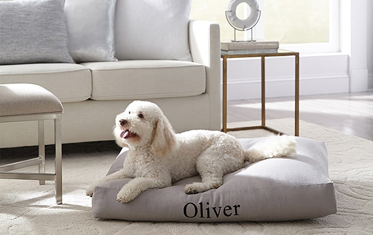 Pet Lover | Kathy Kuo Home
