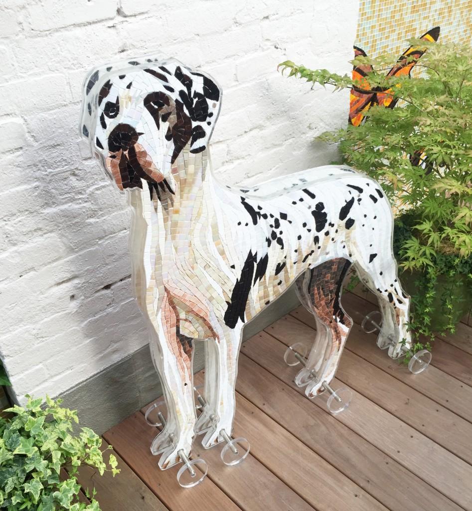 mosaicdog