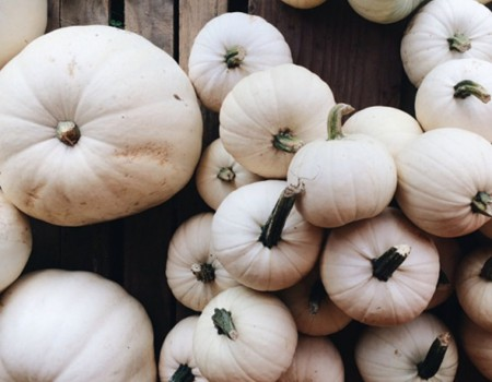 How to Prepare Your Porch for Fall