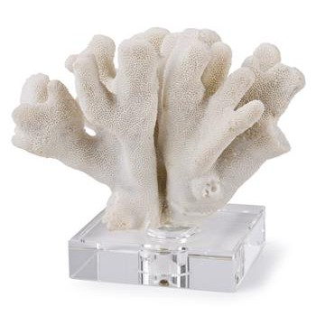 Cozumel White Mitten Coral on Crystal Base