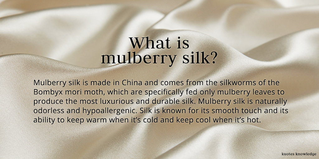 The rug guide we 39 ve got you covered for What do we use silk for