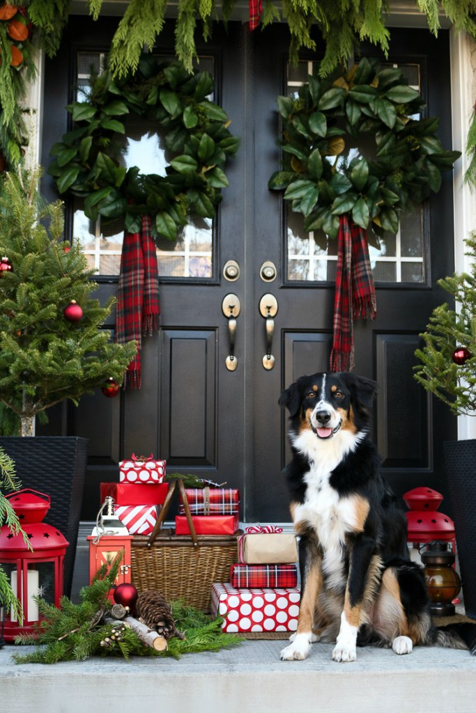 dog sitting on porch with holiday decorations and gifts