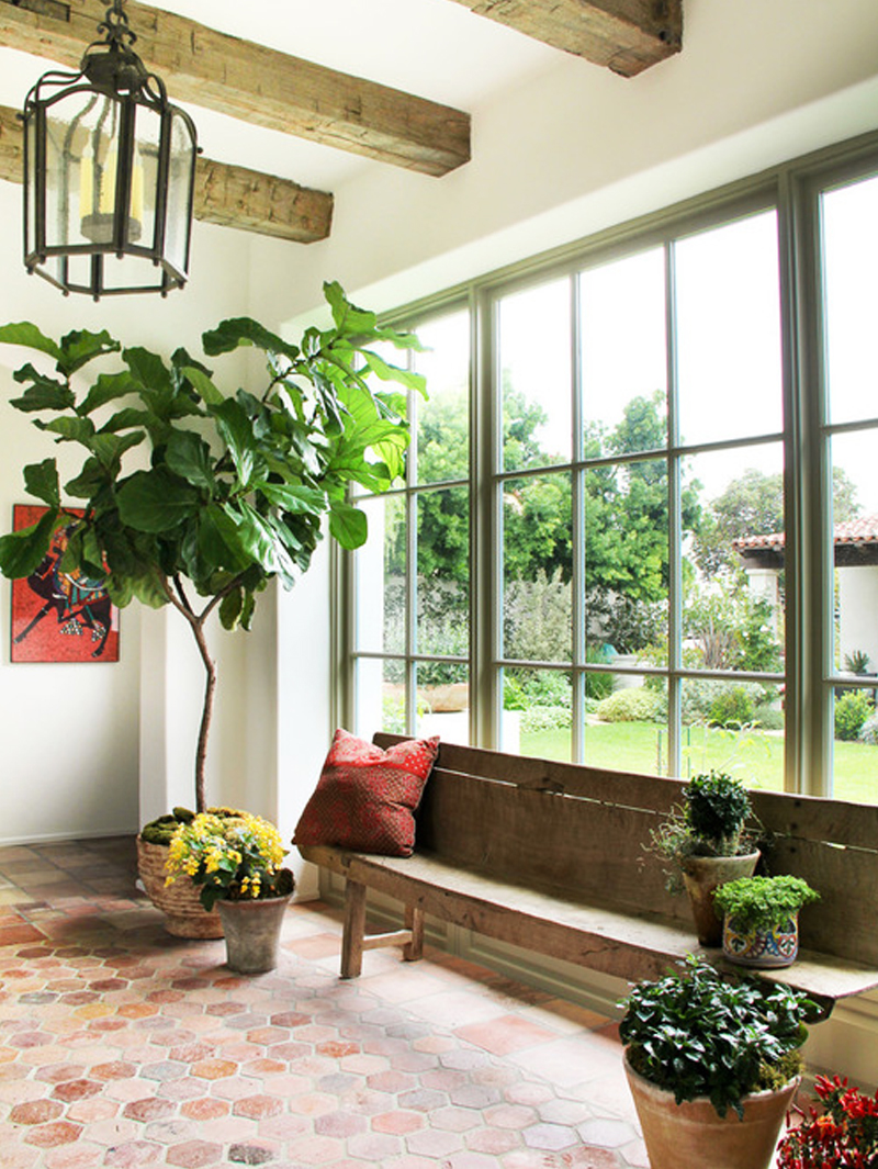 sunroom decorated with houseplants