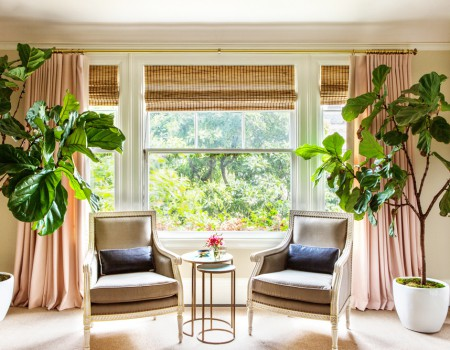 The Rise and Fall of the Fiddle-Leaf Fig | Kathy Kuo Home