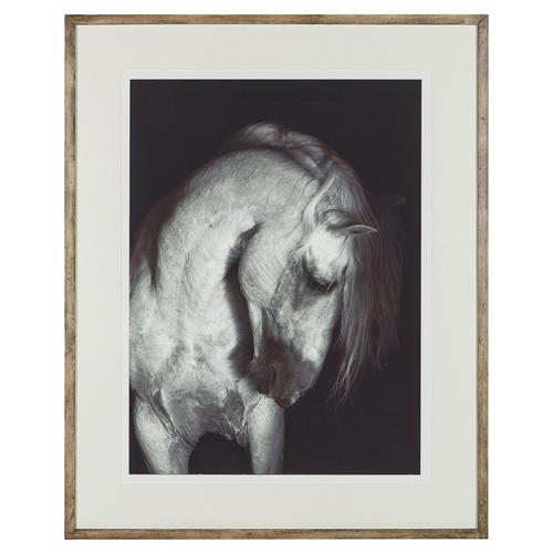 Grey Equestrian Museum Framed Photograph