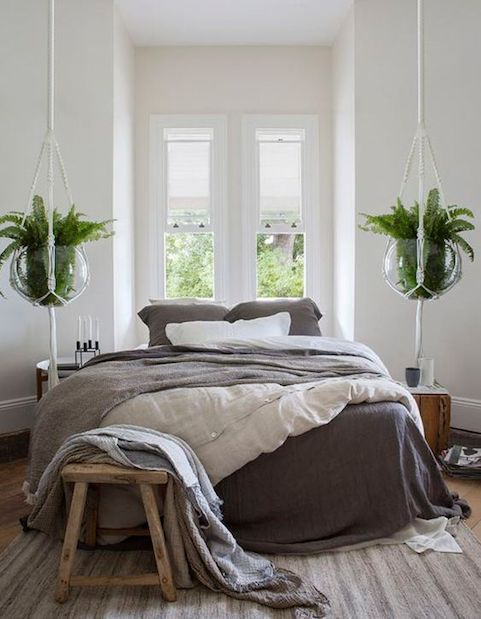 bedroom interior with hanging plants
