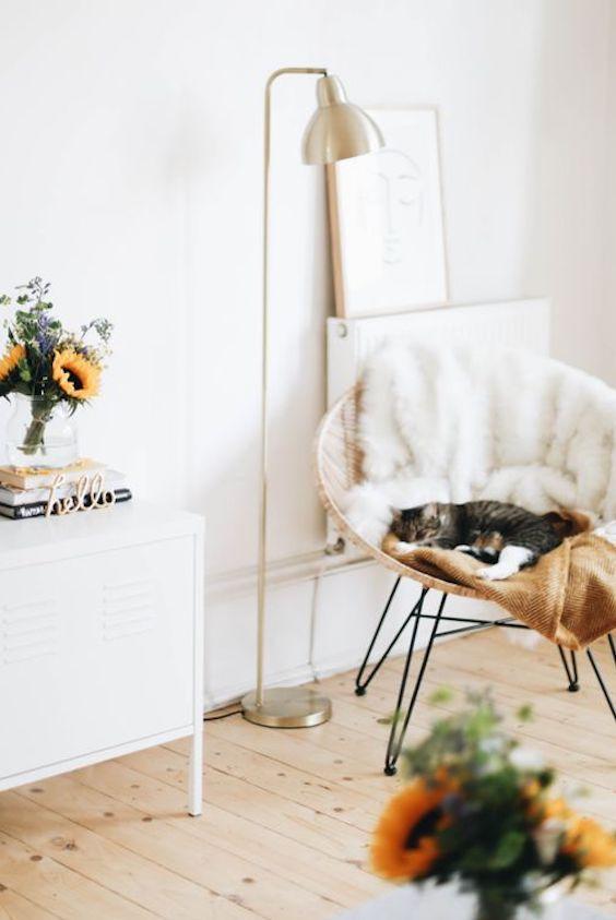 cat sleeping in fluffy chair