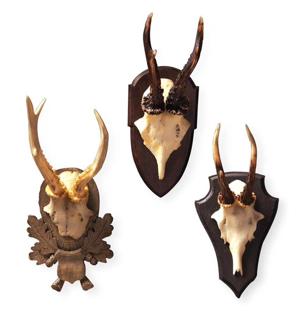 set of wall antlers