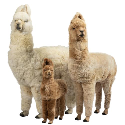 set of llamas
